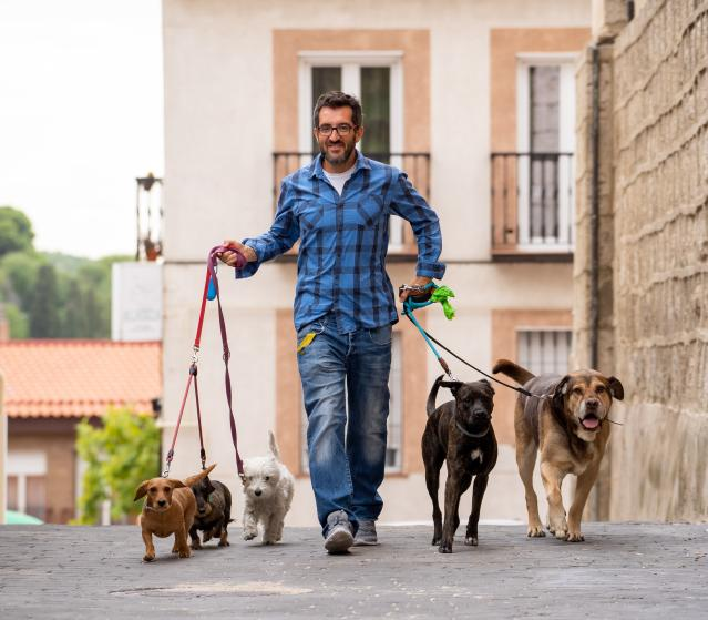 image for article: Dog Walkers Can Help When You Can't Take Your Pooch Out