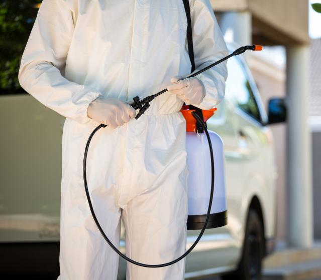 square of Pest Control Keeps Your Home Safe From Filthy Pests